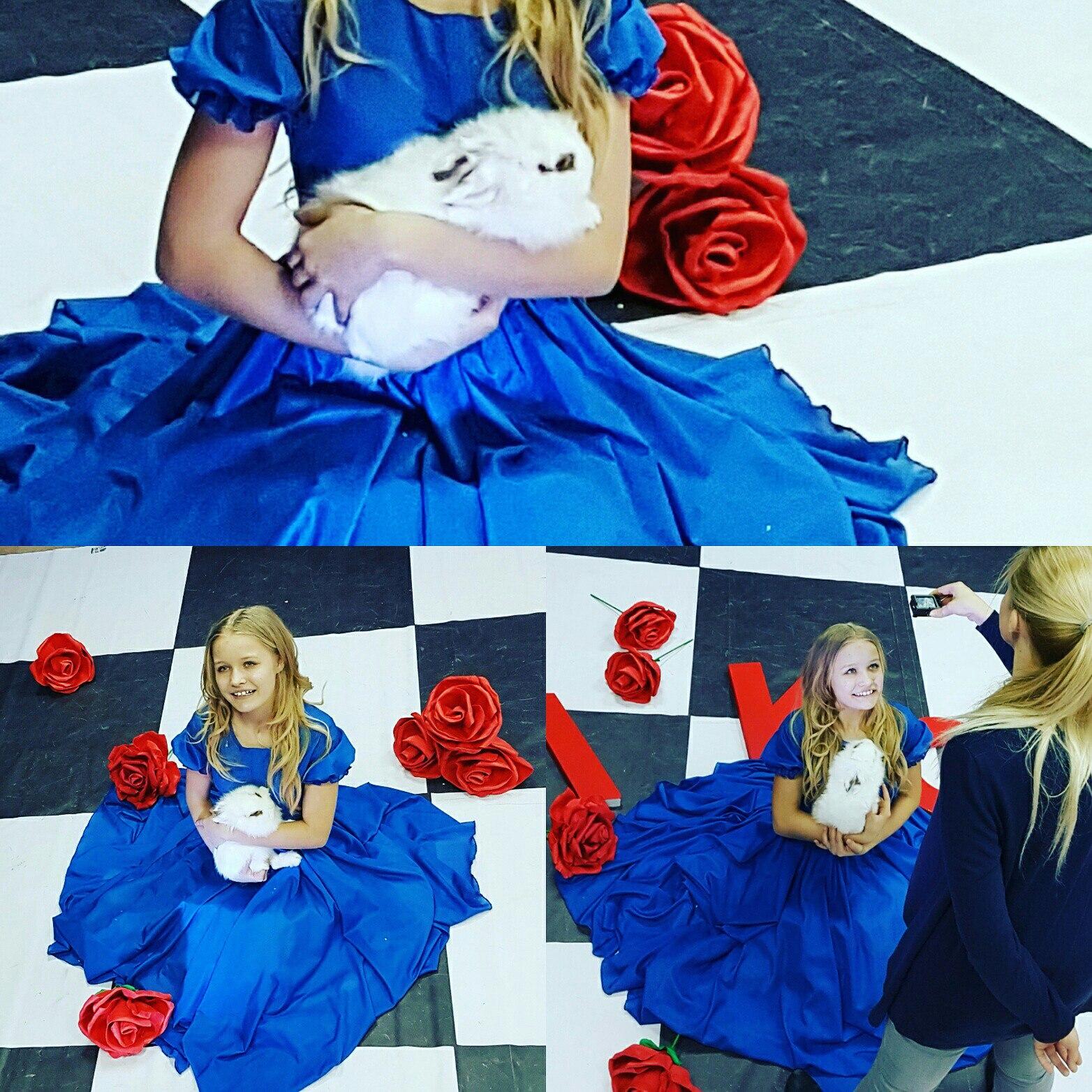 Алиса клип14