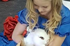 Алиса клип11